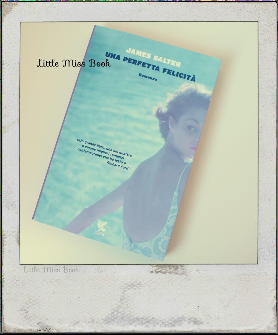 UnaperfettafelicitàdiJamesSalter-LittleMissBook