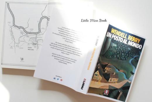 UnpostoalmondodiWendellBerry-LittleMissBook