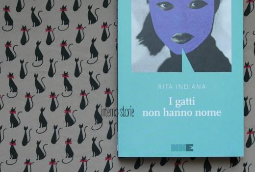 I gatti non hanno nome di Rita Indiana - interno storie