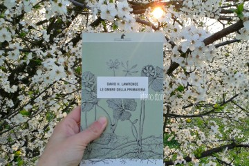 Le ombre della primavera di David H. Lawrence - interno storie