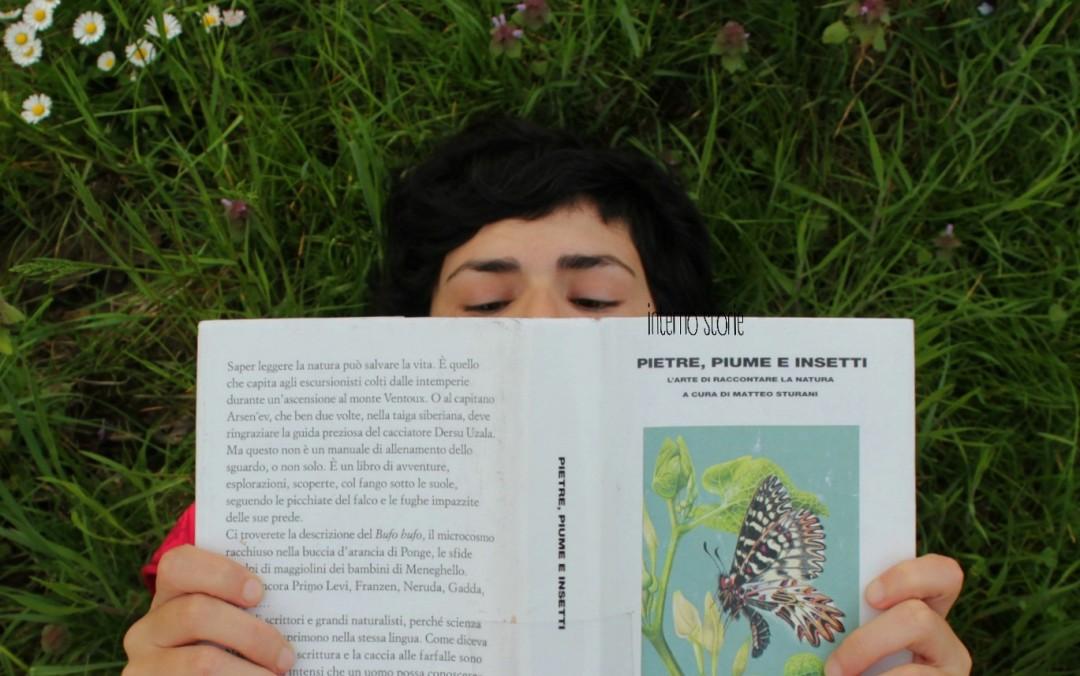 Pietre, piume e insetti a cura di Matteo Sturani - interno storie