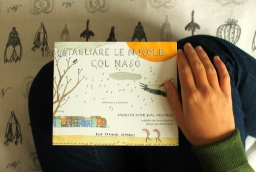 Tagliare le nuvole col naso di Ella Frances Sanders - interno storie