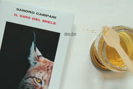 Il giro del miele di Sandro Campani - interno storie