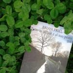 Tutto in ordine e al suo posto di Brian Friel - interno storie