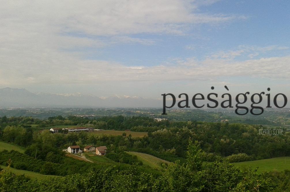 Dicesi paesaggio - interno storie