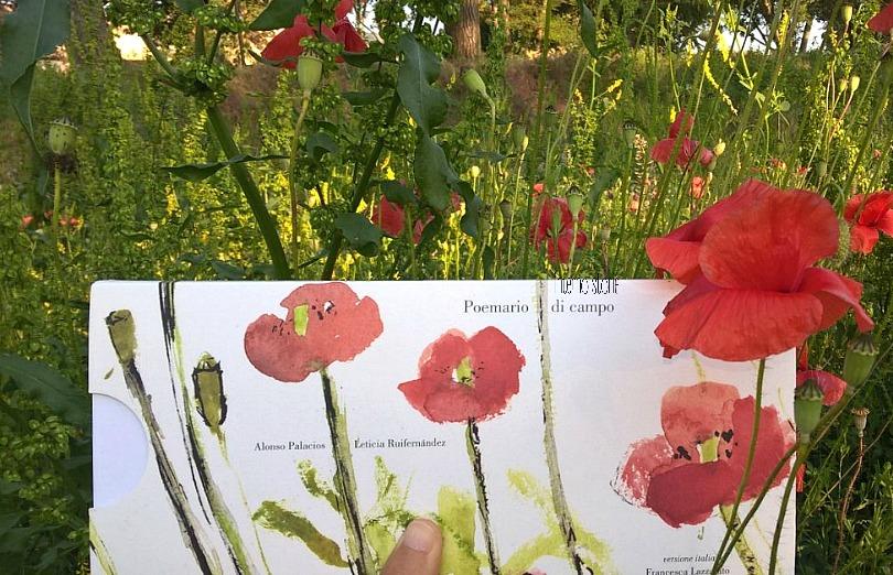 I piccolini - Storie botaniche - interno storie