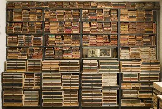 Biblioteca del bosco