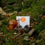 The Wander Society di Keri Smith - interno storie