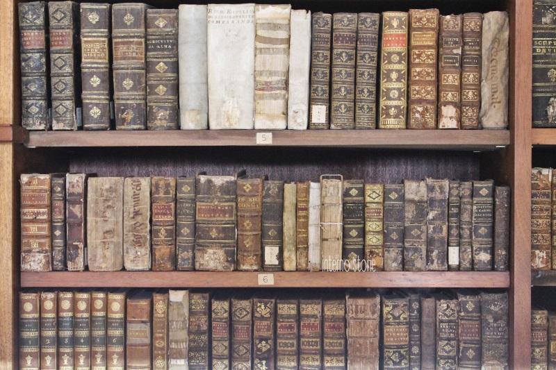Diario di bordo - Porto è un azulejo Coimbra è bianca - Biblioteca Joanina - interno storie