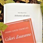 Colori d'autunno, i boschi di Thoreau e Rigoni Stern