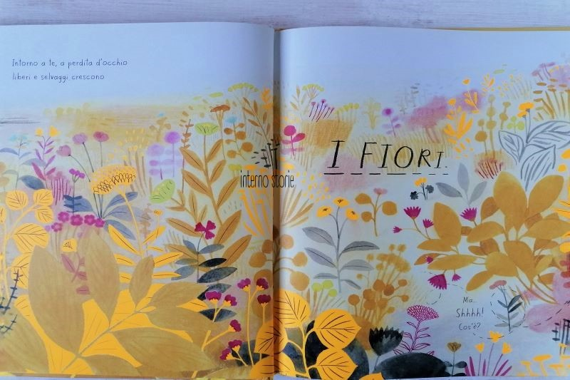 Matite - i fiori - Vita da ape - interno storie